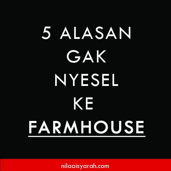 blog-farm